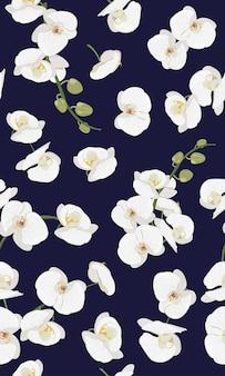 Modello senza cuciture floreale dell'orchidea bianca