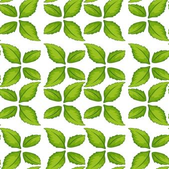 Modello senza cuciture verde foglia