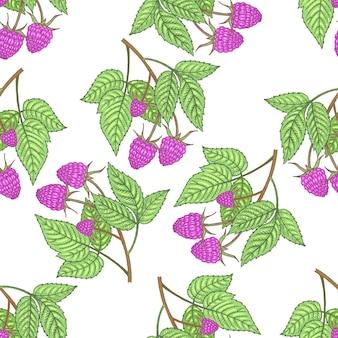 Modello senza soluzione di continuità. rami con foglie e lamponi su uno sfondo bianco. illustrazione per imballaggi, carta, carta da parati, tessuti, tessuti.