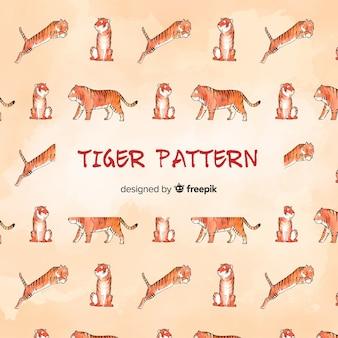 Modello tigre
