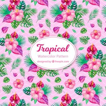 Modello tropicale acquerello colorato
