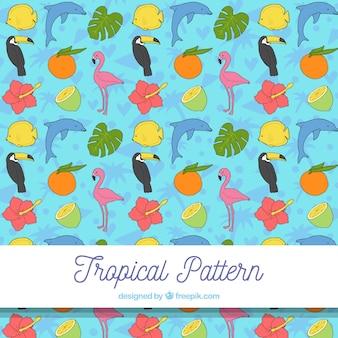Modello tropicale con uccelli e frutti