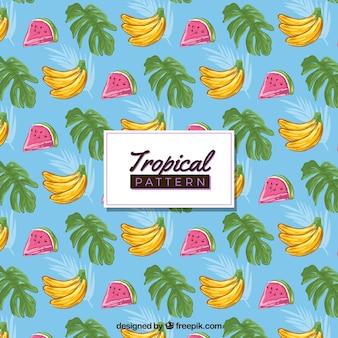 Modello tropicale disegnato a mano colorato
