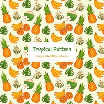 Modello tropicale