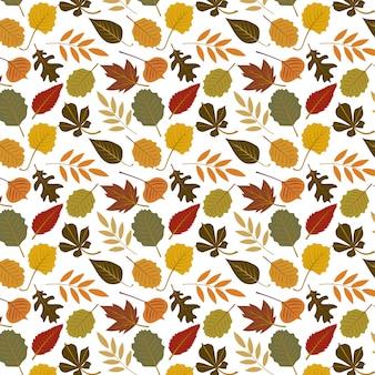 Modello variopinto delle foglie di autunno isolato su fondo bianco