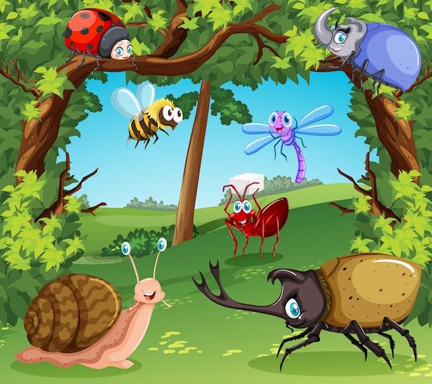Molti tipi di insetti nella foresta