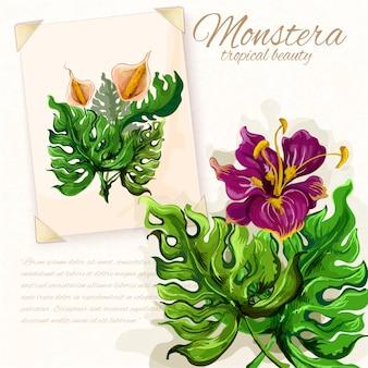 Monstera lascia con fiori di ibisco