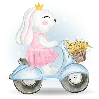 Motorino di guida sveglio della coniglietta con un canestro del fiore