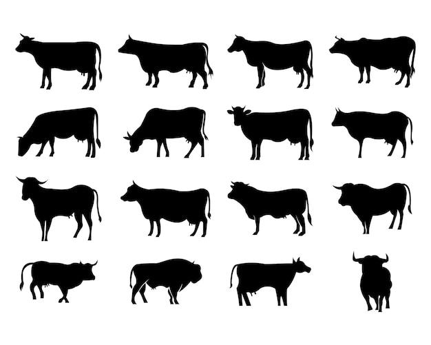 Mucca al pascolo sul prato