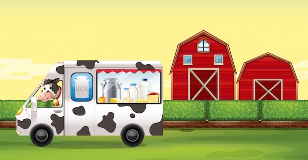 Mucca che guida il camion del latte in fattoria
