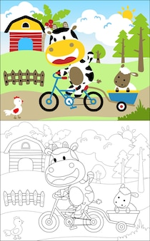 Mucca e amici in terreni agricoli