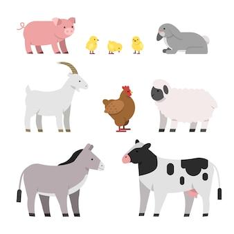 Mucca e pollo, maiale e gallina, gallo e pecora