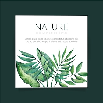 Natura tropicale con volantini quadrati di foglie esotiche