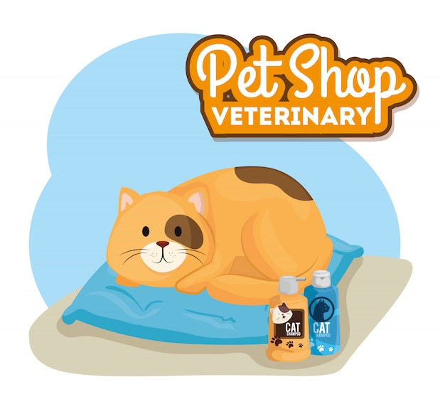 Negozio di animali veterinario con gattino