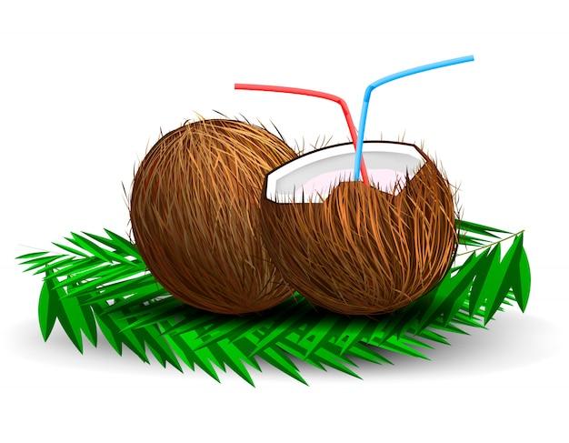 Noce di cocco isolata su fondo bianco con i tubi beventi e l'ombra