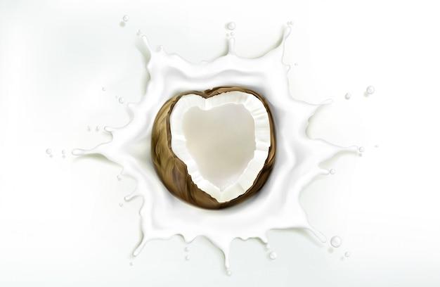 Noce di cocco nella spruzzata del latte sul contesto bianco
