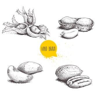 Noci brasiliane e gruppi di noci pecan