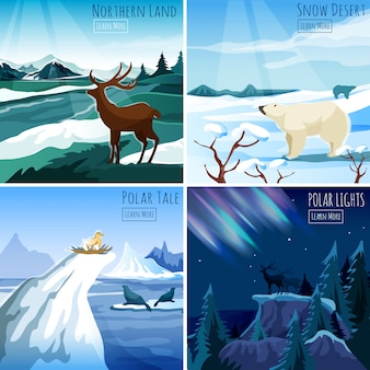 Northern landscape 4 flat icons square