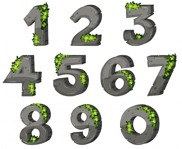 Numeri con roccia e foglie