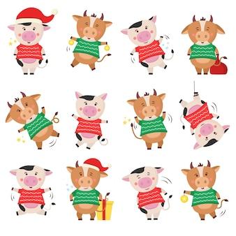 Nuovo anno cinese 2021 mucca che tiene un segno d'oro. simbolo dello zodiaco lunare cinese del 2021. calendario. progettazione di fattoria. poster modello elemento design, banner, flyer, logo con viso, testa, toro sagoma. vettore.