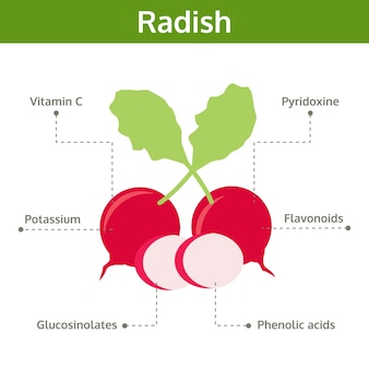 Nutriente di radish di fatti e benefici per la salute
