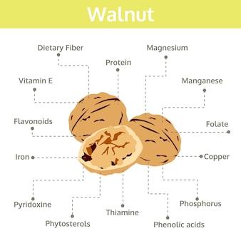 Nutriente noce di fatti e benefici per la salute