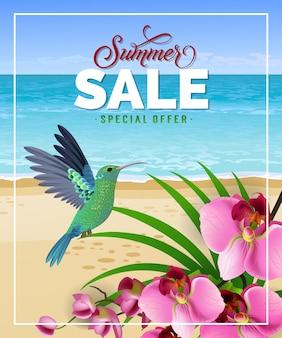 Offerta speciale vendita estate lettering con spiaggia e colibrì.