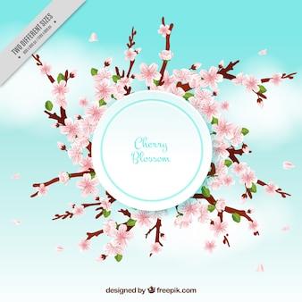 Offuscata sfondo con fiori di ciliegio
