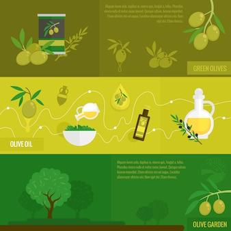 Olive disegno banner petrolio
