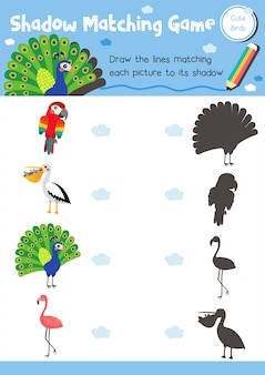 Ombra gioco di abbinamento uccello animale