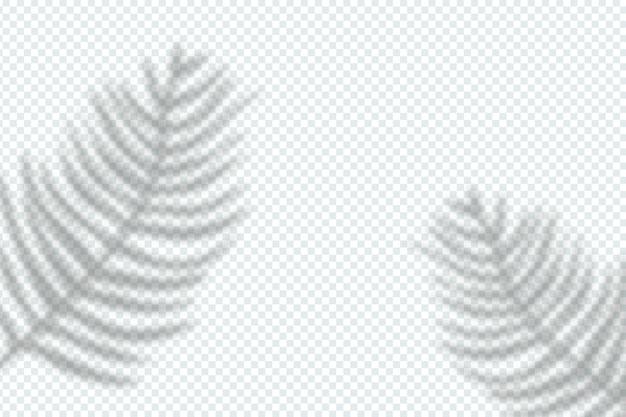 Ombre grigie stile effetto sovrapposizione