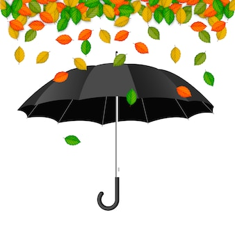Ombrello con foglie che cadono