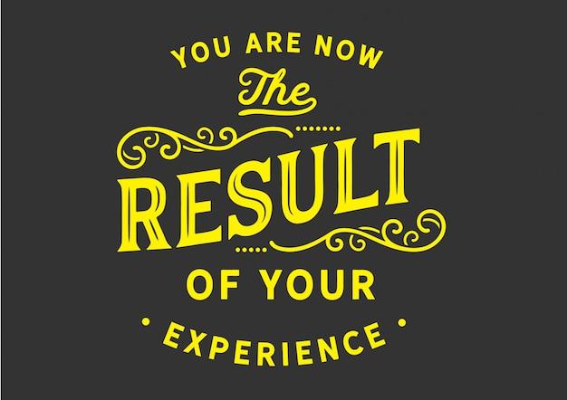 Ora sei il risultato della tua esperienza
