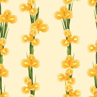 Orange iris flower su sfondo beige avorio