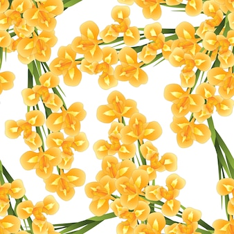 Orange iris flower su sfondo bianco