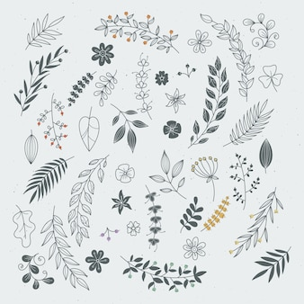 Ornamenti disegnati a mano rustici con rami e foglie. cornici e bordi floreali di vettore
