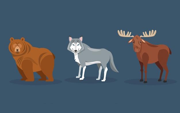 Orso immagine icone lupo e alce