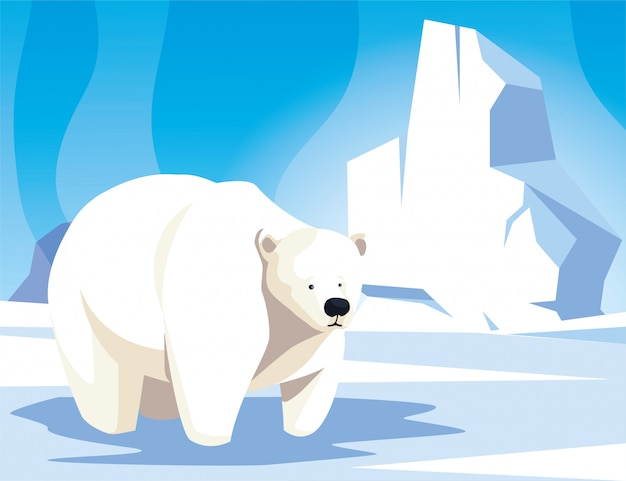 Orso polare al polo nord, paesaggio artico