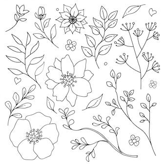 Outline motivo floreale