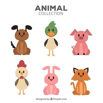 Pacchetto colorato di animali piatti