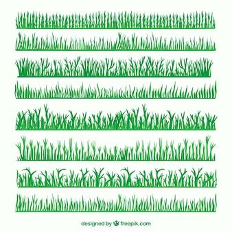 Pacchetto confine erba verde