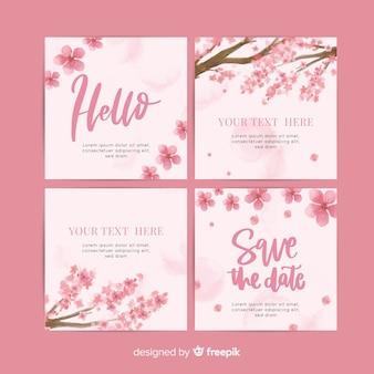 Pacchetto di fiori di ciliegio