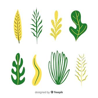 Pacchetto di foglie disegnate a mano astratto