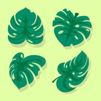 Pacchetto di foglie monstera illustrazione