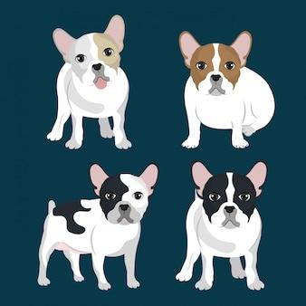 Pacchetto di illustrazione del bulldog