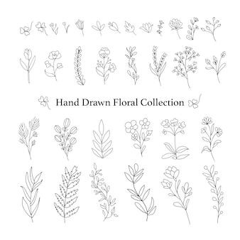 Pacchetto di rami floreali disegnati a mano.
