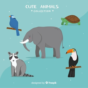 Pack di animali selvatici kawaii