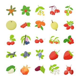 Pack di icone di frutti di bosco