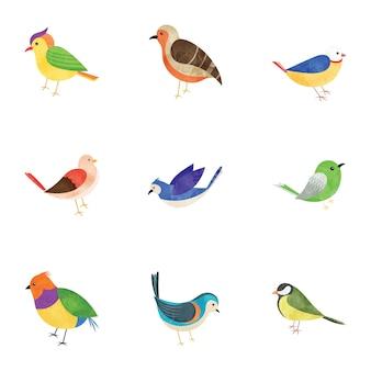Pack di icone piane di uccelli piumati