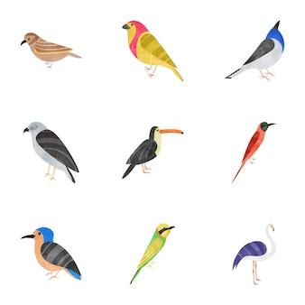 Pack di icone piatte di uccelli